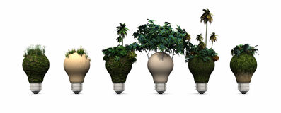电灯泡和生态系 免版税库存照片