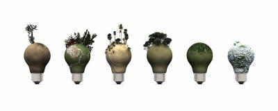 电灯泡和生态系 免版税库存图片