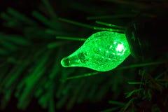 电灯泡圣诞节绿灯结构树 免版税图库摄影
