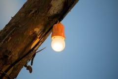 电灯泡在一根木杆烧 库存图片