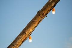 电灯泡在一根木杆烧 库存照片