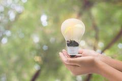 电灯泡在妇女手,现实照片图象上 打开钨 免版税库存图片