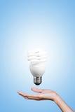 电灯泡在手中有灰色背景。 免版税库存图片