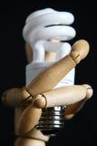 电灯泡木质藏品的光 免版税图库摄影