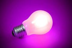 电灯泡查出的光 免版税图库摄影