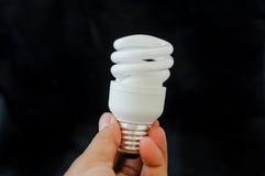 电灯泡查出的轻的白色 库存照片