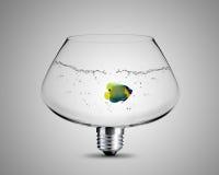 电灯泡概念光 库存图片