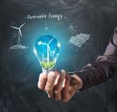电灯泡概念能源花绿灯可延续的结构树 免版税库存照片