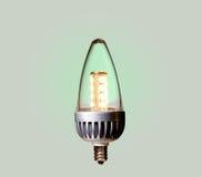 电灯泡生态学绿色导致的路径 免版税库存图片