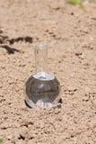 电灯泡用在旱田的清楚的水 免版税库存图片