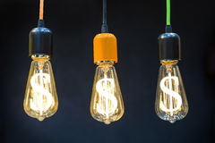 电灯泡美元光符号 库存图片