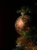 电灯泡被日光照射了圣诞节的纵向 免版税库存照片