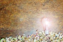 电灯泡铅笔壳 库存图片