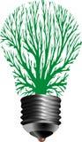 电灯泡闪亮指示结构树 免版税库存图片