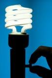 电灯泡高效的能源荧光灯 库存图片