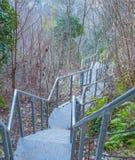 电烙在山的一个树木繁茂的部分的楼梯 免版税库存照片