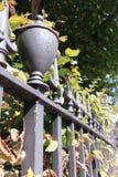 电烙毗邻伦敦庭院正方形在秋天的栏杆 库存图片