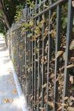 电烙毗邻伦敦庭院正方形在秋天的栏杆 图库摄影