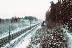 电烙路轨和foresr在冬时 免版税库存照片