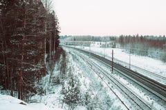 电烙路轨和foresr在冬时 库存图片