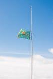 电烫,俄罗斯, 7月04日 2015年:举的航空旗子 库存图片