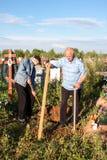 电烫,俄罗斯- 7月13 2016年:两个人建立一条长凳 库存图片