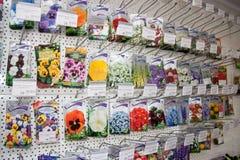 电烫,俄罗斯- 3月04 2016年:经济的商店物品 库存图片