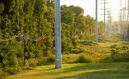 电线杆和高压电缆 库存照片