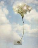 电结构树 图库摄影