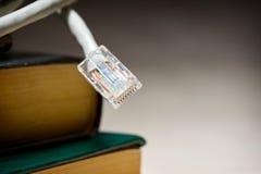电缆以太网 库存照片