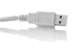 电缆插件usb 库存图片