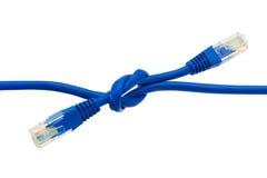 电缆连接了互联网 图库摄影