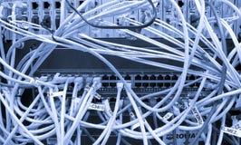 电缆连接了纤维服务器 免版税库存照片