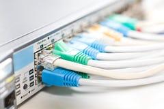 电缆连接了网络 库存图片