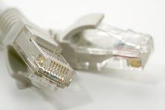 电缆连接电子以太网rj45 库存图片