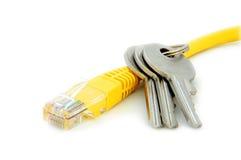 电缆锁上网络 库存照片