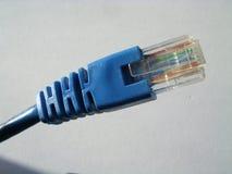 电缆lan 库存照片