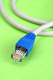 电缆lan 库存图片