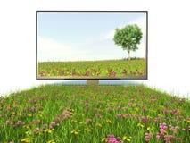 电视和优质技术,自然 库存照片