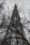 电视和无线电铁塔和树枝在天空背景 免版税库存照片