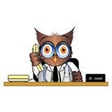 电话博士猫头鹰在书桌上的 免版税库存照片