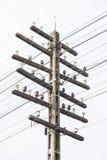 电话线杆 免版税库存照片