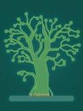 电路结构树 图库摄影