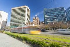 电车在一个现代绿色城市 免版税库存照片