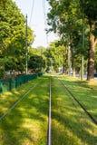 电车轨道在绿色城市 免版税库存照片