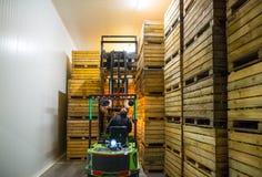 电铲车的雇员运载有r的容器 图库摄影
