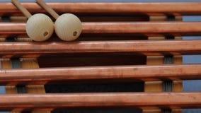 电颤琴木头 库存照片