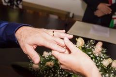 男人和妇女在注册处互相卷起在无名指在婚礼 库存照片