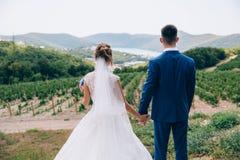 男人和妇女结婚了,他们紧紧握手并且看对未来 夫妇敬佩秀丽 库存图片