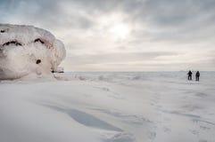 男人和妇女走与雪靴 免版税库存图片